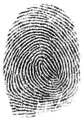 fingerprints-parents-children-similar